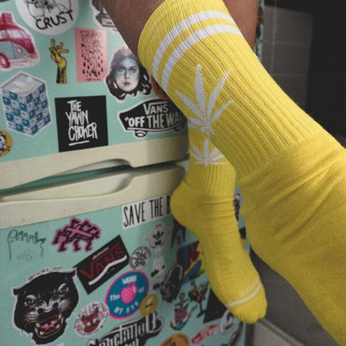 Bee Unusual - Κάλτσες - YELLOW