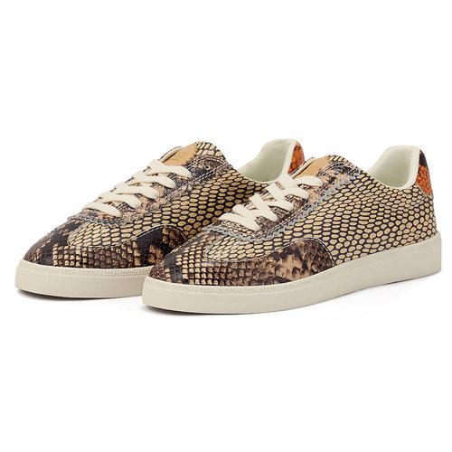 Scotch & Soda Laurite - Sneakers - BRO.SNAKE OPTIC