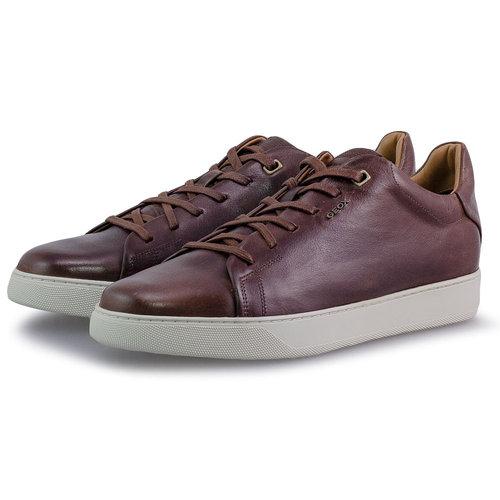Geox U Coryan A - Sneakers - BROWN